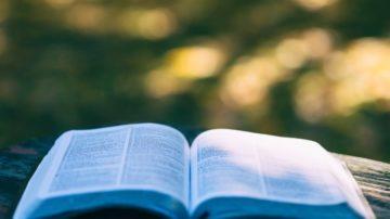 Curso Bíblico II