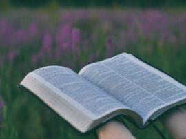 Curso Bíblico III