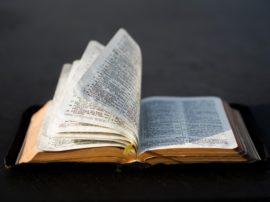 Curso Bíblico V