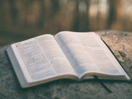 CURSO BÍBLICO VI – O EVANGELHO SEGUNDO MATEUS